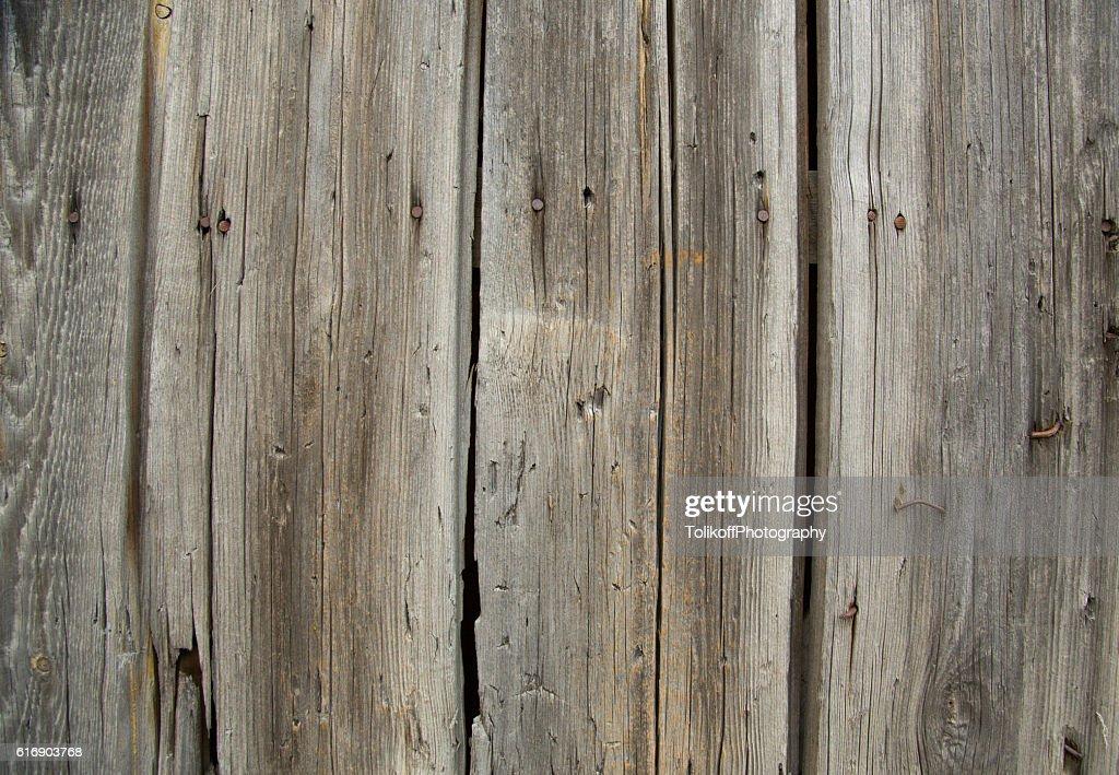 Old wooden door - background : Stock Photo