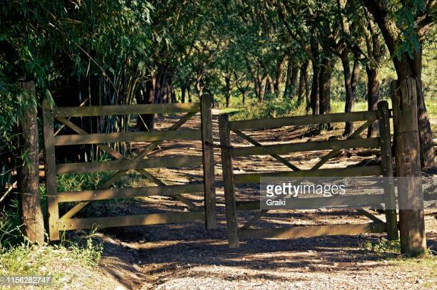 old wooden gate on the farm. - sorocaba stock pictures, royalty-free photos & images
