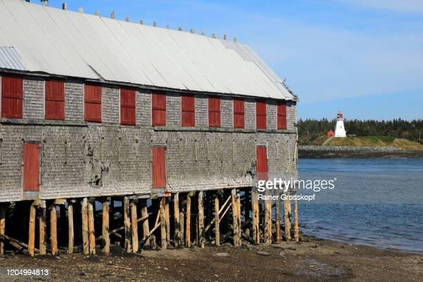 old wooden house on piles on the bay shore with an old lighthouse on the opposite side of the bay - rainer grosskopf stock pictures, royalty-free photos & images