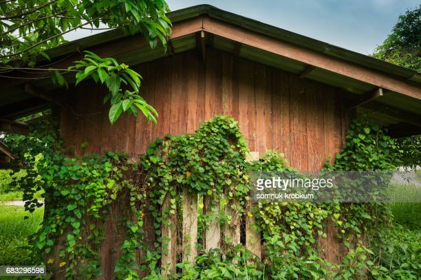 26 Gable Roof Gate Photos And Premium High Res Pictures Getty Images