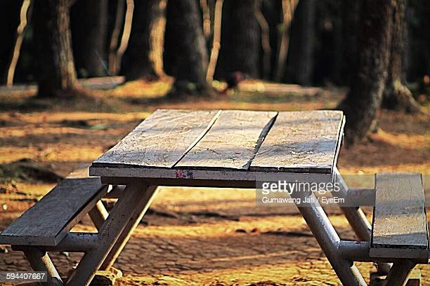Old Wooden Table Against Trees