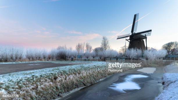 old wooden windmill in penningsveer - haarlem stock photos and pictures