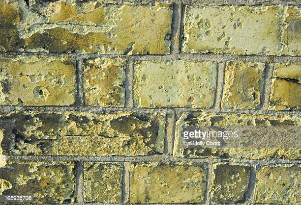 old yellow brick wall - lyn holly coorg stock pictures, royalty-free photos & images