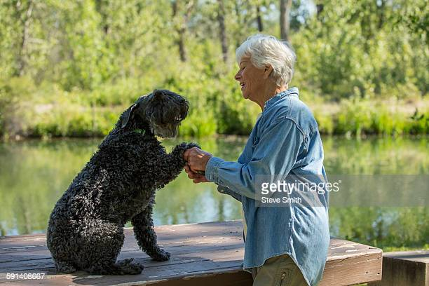 Older Caucasian woman shaking paw of dog in park