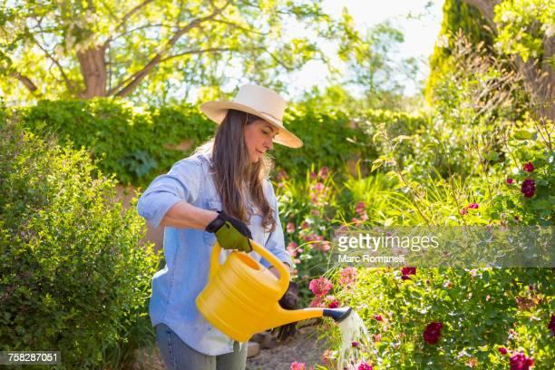 Older Caucasian woman watering flowers
