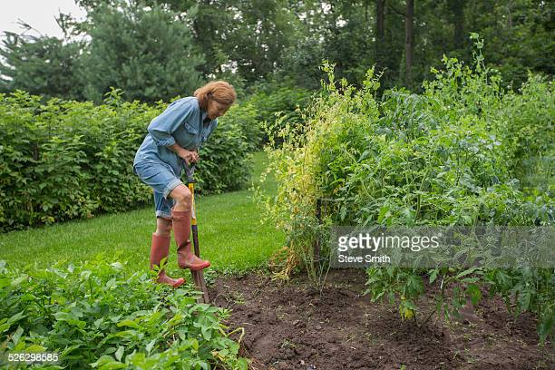 Older Caucasian woman working in garden