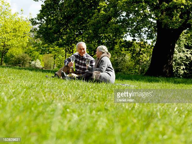 older couple drinking wine at picnic - 69 position stock photos and pictures