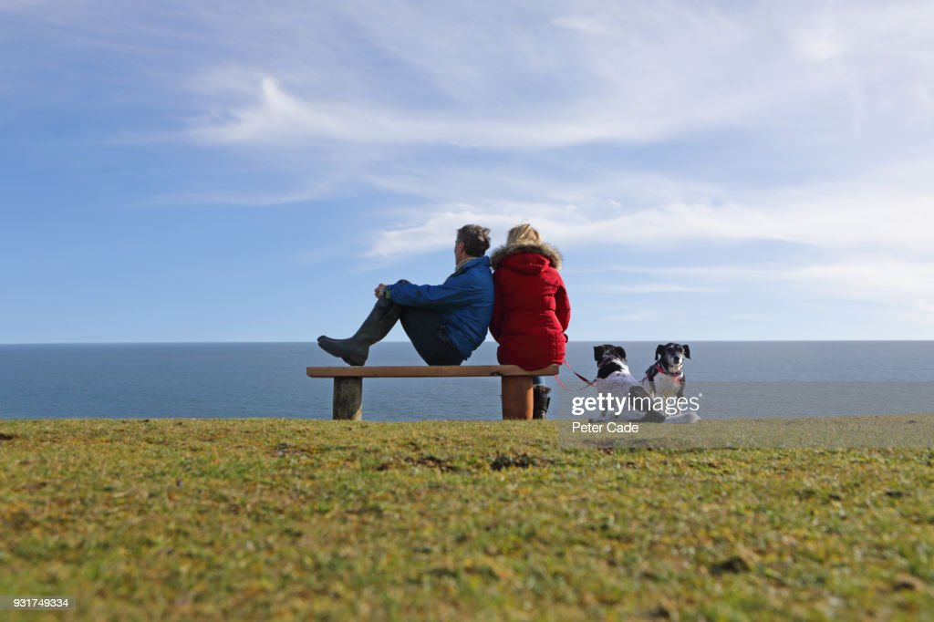 older couple with dogs sat on bench looking out to sea with dogs