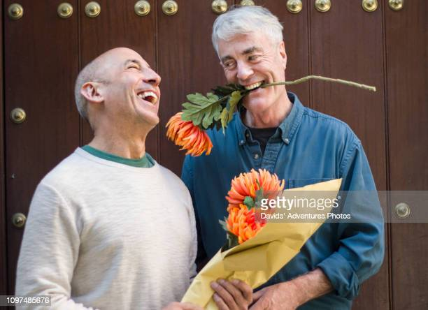 older gay male couple with flowers, acting silly and affectionate - gay seniors photos et images de collection