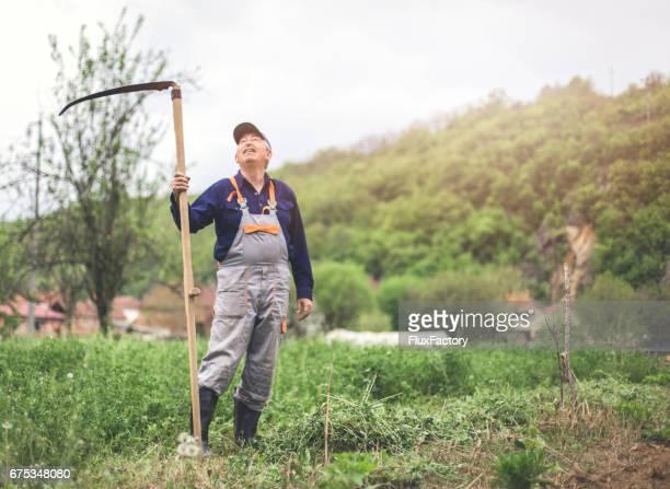 Ältere Mann arbeitet auf dem Gebiet