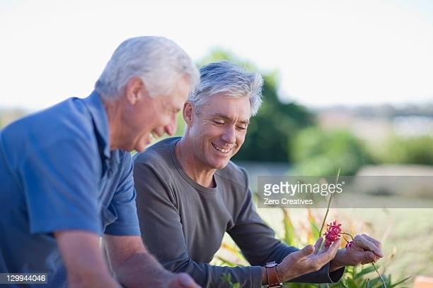 Older men examining garden together