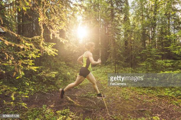 older woman trail running in forest - anchorage alaska stock photos and pictures