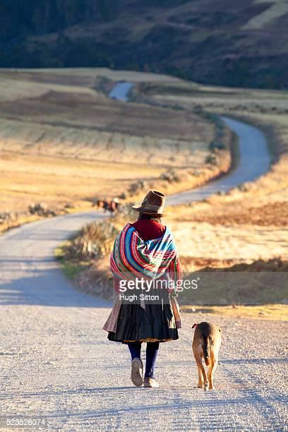 older woman walking in the mountains near moray. cusco. peru. - hugh sitton imagens e fotografias de stock