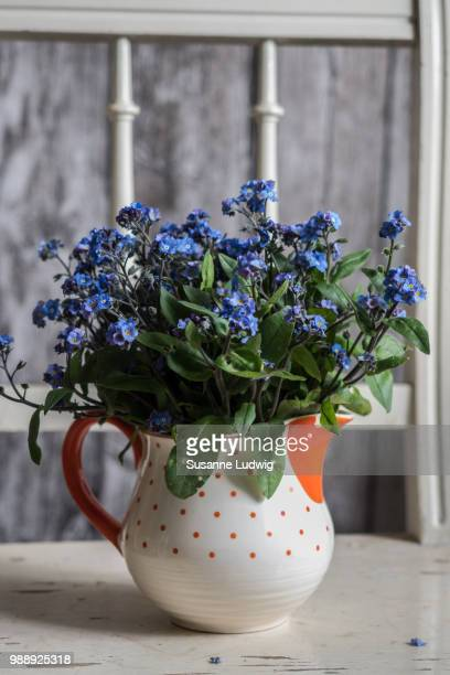 old-fashioned - susanne ludwig stock pictures, royalty-free photos & images