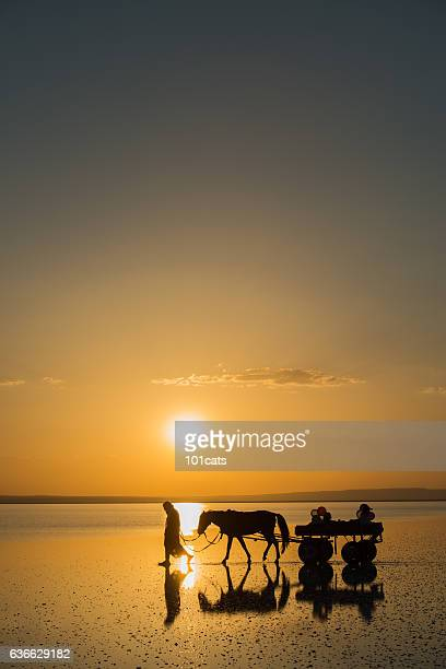 Oldman carrying his family with horse cart on the lake