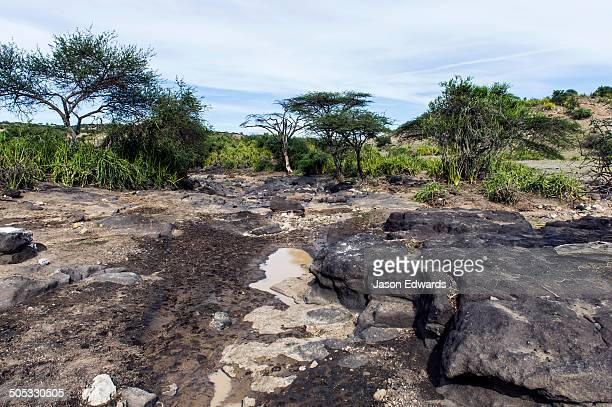 Muddy puddles dwindling beside eroded rocks in a dry river bed.