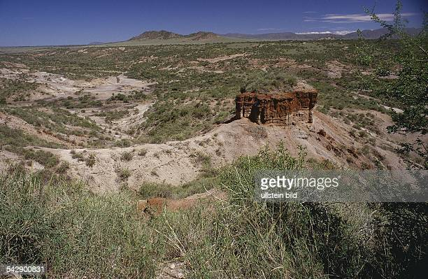 'Olduvai Gorge' North of Tanzania here the Australopitecus boisel and Homo habilis were found