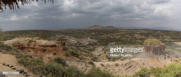 olduvai gorge - archaeology stock pictures, royalty-free photos & images