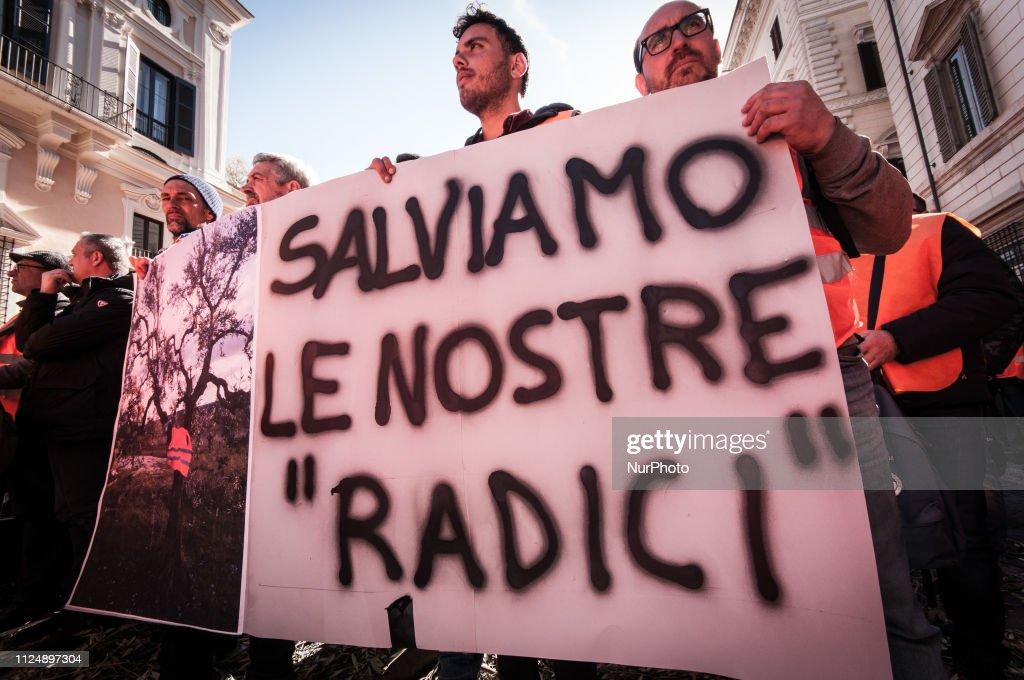 ITA: Orange Vests Demo In Rome
