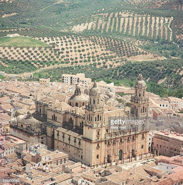 Olive orchards surround the town of Jaen with its magnificent cathedral Spain | Location Jaen Spain