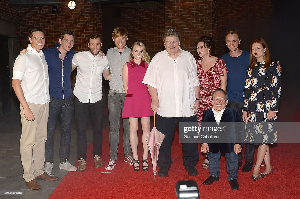 The Wizarding World of Harry Potter Diagon Alley Red Carpet Arrivals : News Photo