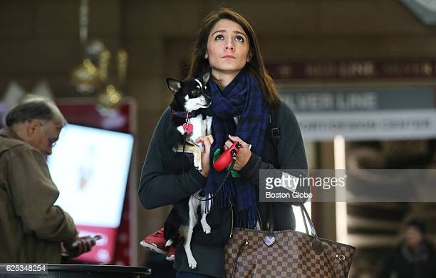 Olivia Chilles of Westboro waits to board a train with her dog Bentley at South Station in Boston on Nov 23 the day before Thanksgiving Chilles had...