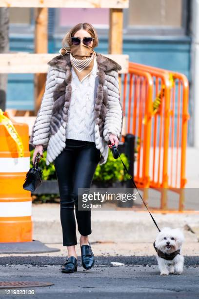 Olivia Palermo wears a scarf on her face while walking her dog in Brooklyn on April 19, 2020 in New York City.