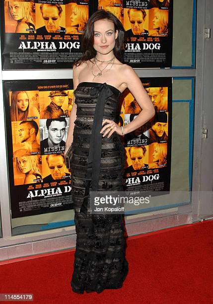 Olivia Wilde during 'Alpha Dog' Los Angeles Premiere Arrivals at ArcLight Cinemas in Hollywood California United States