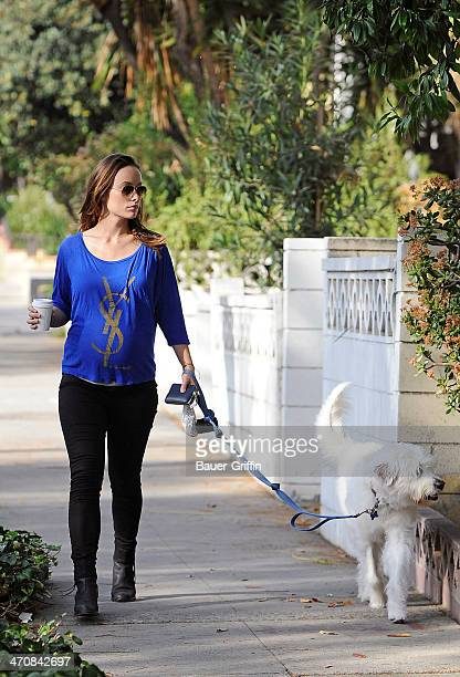 Olivia Wilde is seen walking her dog on February 20 2014 in Los Angeles California