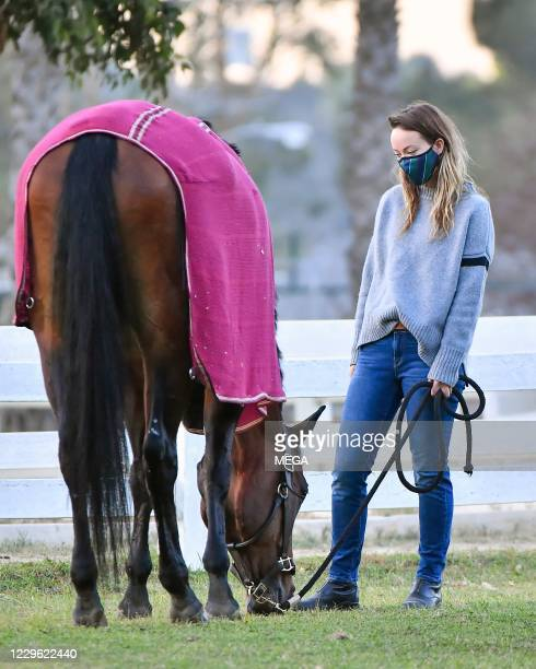 Olivia Wilde steps out to visit her horses on November 14, 2020 in Los Angeles, California.