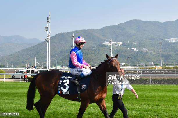 Olivier Peslier riding Tiberian before Race 4 The Longines Hong Kong Vase during Longines Hong Kong International Race Day at Sha Tin Racecourse on...