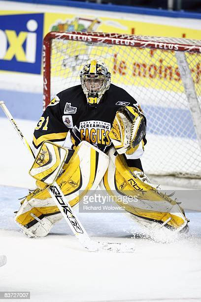 Olivier Roy of the Cape Breton Screaming Eagles stands ready during the game against the Quebec Remparts at the Colisee Pepsi on November 12, 2008 in...