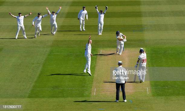 Ollie Robinson of Sussex celebrates taking the wicket of Nick Selman of Glamorgan during day one of the LV= County Championship match between...