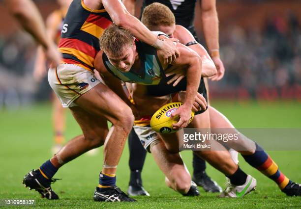 Ollie Wines of Port Adelaide tackled by Reilly O'Brien of the Crows during the round eight AFL match between the Port Adelaide Power and the Adelaide...