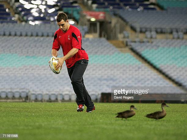 Olly Barkley the England standoff takes a practice kick watched by two ducks on a damp pitch during an England training session held at the Telstra...