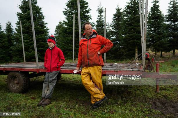 Olly Combe owner of York Christmas Trees stands with his son Joe as he prepares to fell a 20 foot Nordmann Fir tree to be sent to stand outside 10...