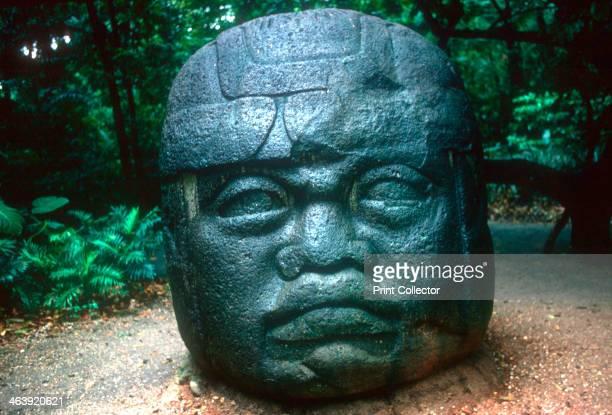 Olmec carved head from La Venta PreColumbian Central America 1150800 BC