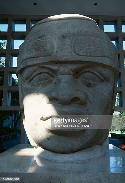 Olmec colossal head 8 height 220 cm found in San Lorenzo Tenochtitlan Veracruz Mexico Olmec civilisation 13th10th century BC Xalapa Museo De...