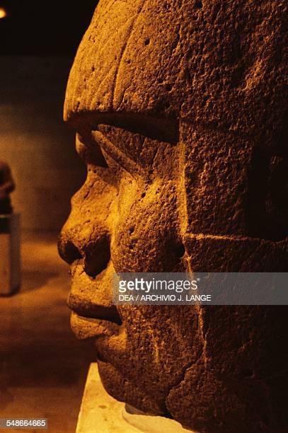 Olmec colossal head 9 height 165 cm found in San Lorenzo Tenochtitlan Veracruz Mexico Olmec civilization 13th10th century BC Detail Xalapa Museo De...