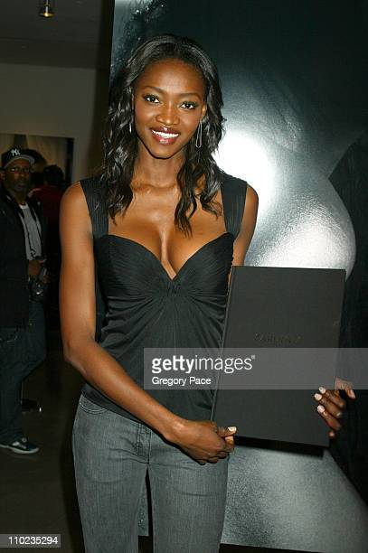 Oluchi Onweagba during Victoria's Secret 'Sexy Volume 3 A Tribute to a Decade of Sexy Swimwear' Launch Party in New York at Milk Studios in New York...