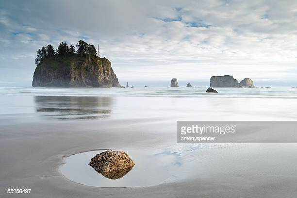 olympic national park coastline, w.a, usa. - washington state stock pictures, royalty-free photos & images