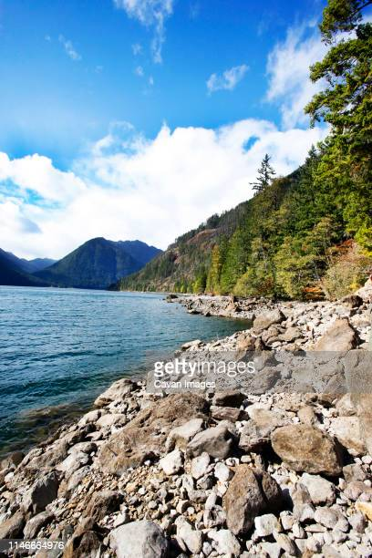 olympic national park - olympic park stock pictures, royalty-free photos & images