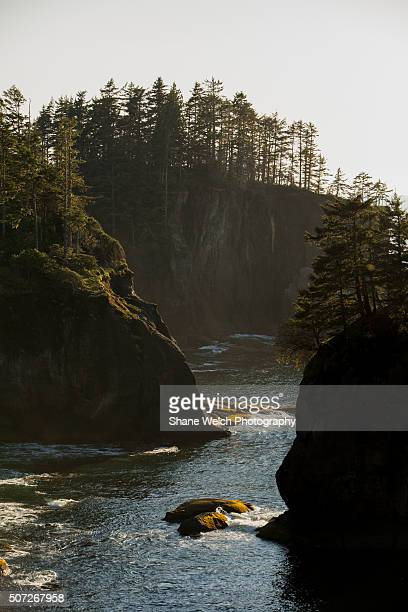 olympic peninsula - cape flattery stock photos and pictures