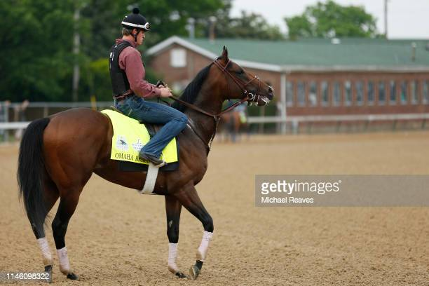 Omaha Beach is seen on the track during morning workouts in preparation for the 145th running of the Kentucky Derby at Churchill Downs on April 30...