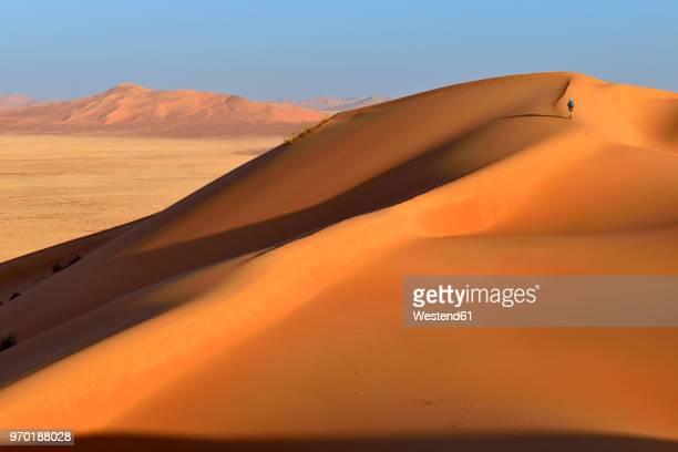 Oman, Dhofar, sand dunes in the Rub al Khali desert