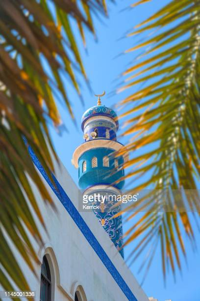 oman - muskat, masjid al rasool al a`dham mosque with palm leafs - gulf countries stock pictures, royalty-free photos & images