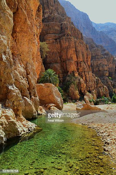 oman - river bed stock photos and pictures