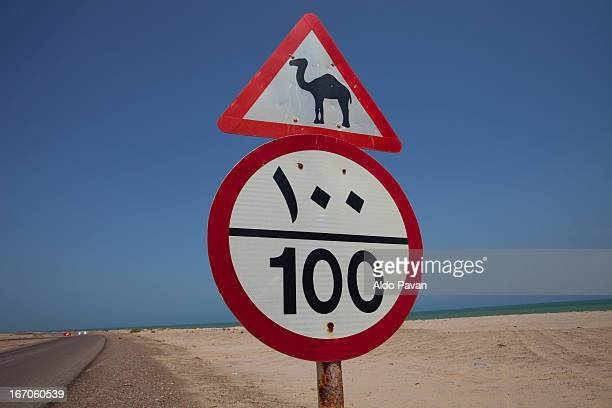 Oman, road sign that warns the passage of camels