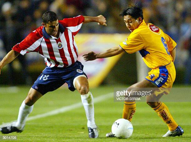 Omar Briseno of Tigres and Salvador Carmona of Chivas fight for the ball during a Mexican league football match in Monterrey Nuevo Leon 25 February...