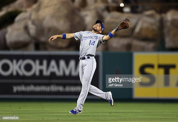 Omar Infante of the Kansas City Royals makes a catch in the eighth inning against the Los Angeles Angels during Game One of the American League...